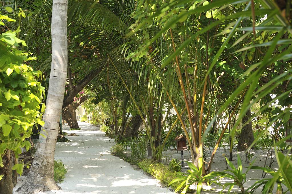 Горящие туры в отель Eriyadu Island Resort