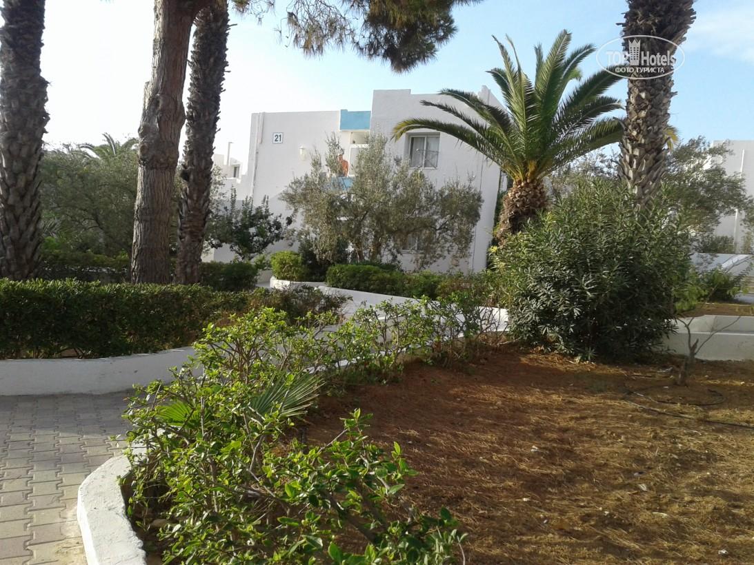 El Mouradi Club Selima Тунис цены