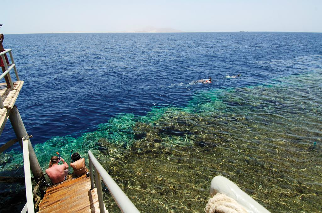 Отдых в отеле Rehana Royal Beach Resort & Spa Шарм-эль-Шейх Египет