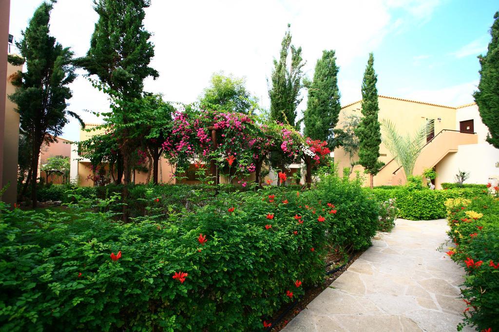 Горящие туры в отель Akteon Holiday Village Пафос Кипр