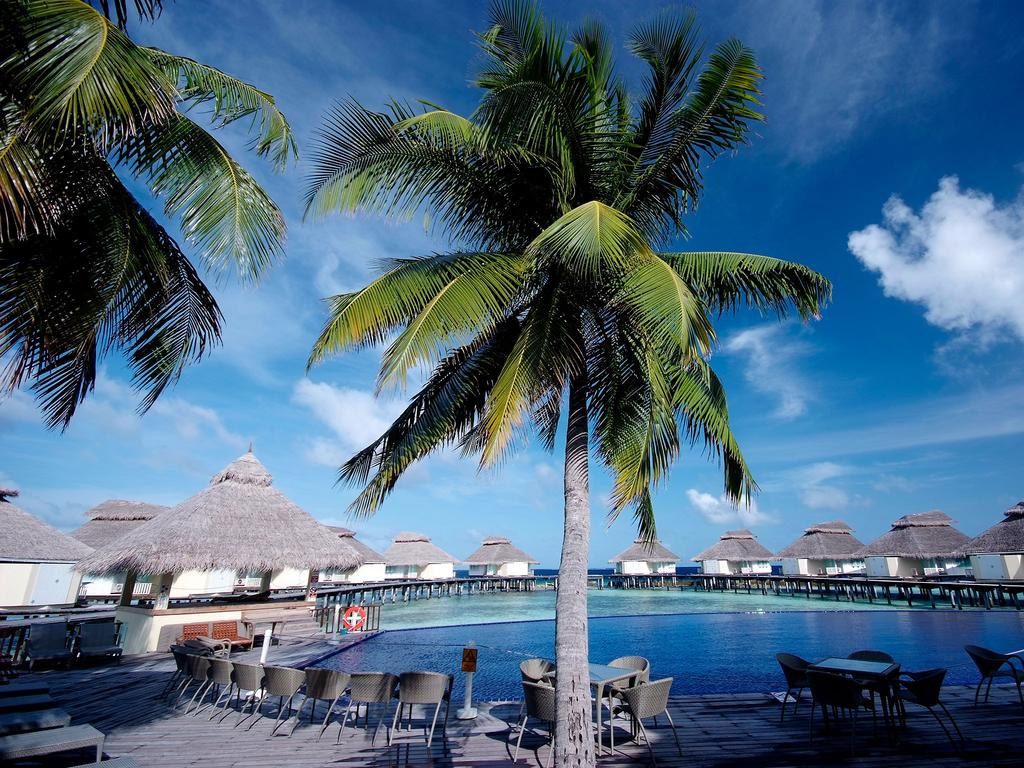 Ellaidhoo Maldives by Cinnamon (ex.Chaaya Reef Ellaidhoo), Мальдивы, Ари & Расду Атоллы, туры, фото и отзывы