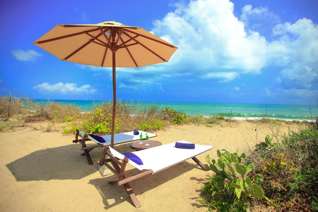 Фото отеля Jungle Beach