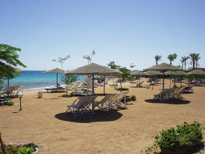 Горящие туры в отель Sea Garden Hotel Hurghada Хургада