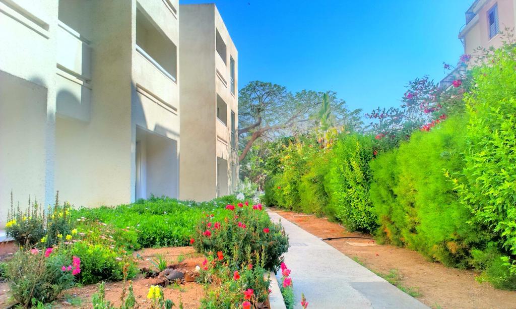 Туры в отель Daphne Hotel Apartments Пафос Кипр