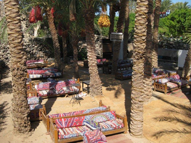 Отдых в отеле Shams Safaga Beach Resort