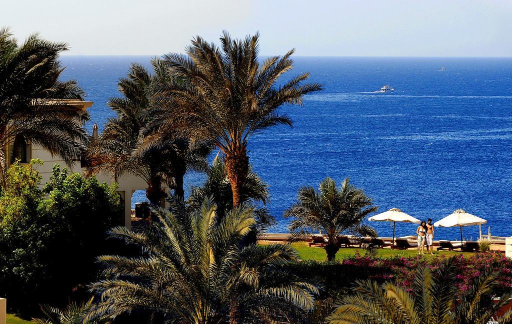 Египет Reef Oasis Beach Resort