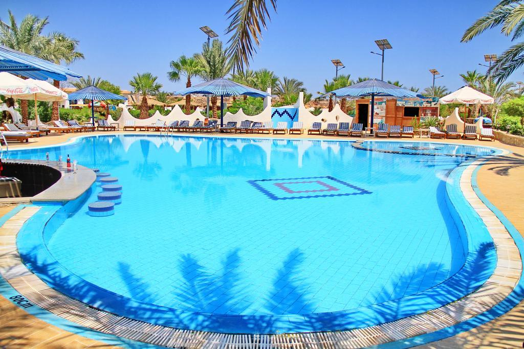 Туры в отель Turquoise Beach Hotel Шарм-эль-Шейх