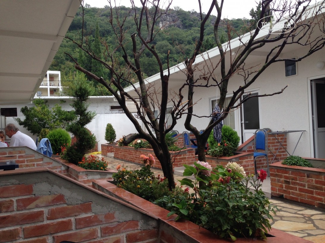 Відгуки гостей готелю Hotel Canj Montenegro