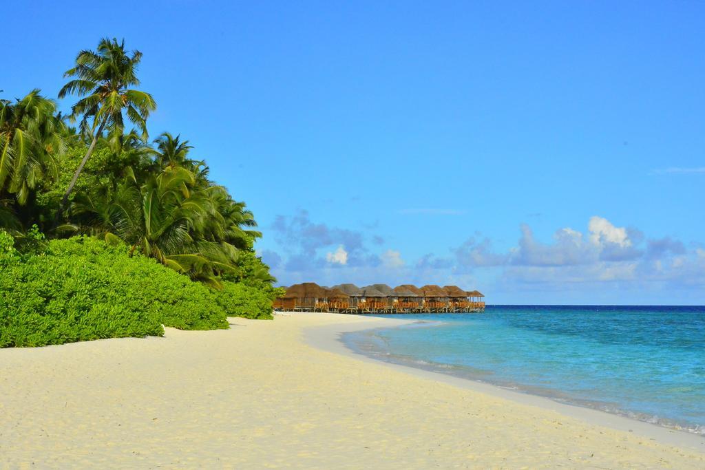 Fihalhohi Island Resort, Мальдивы