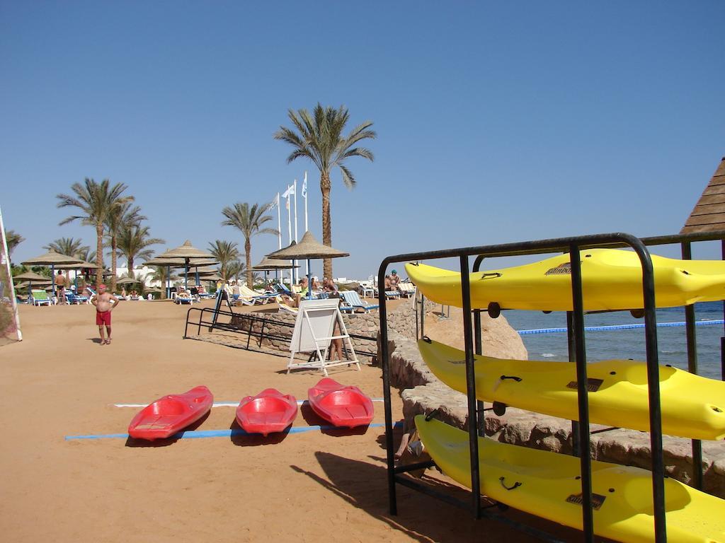 Veraclub Queen Sharm, Египет, Шарм-эль-Шейх