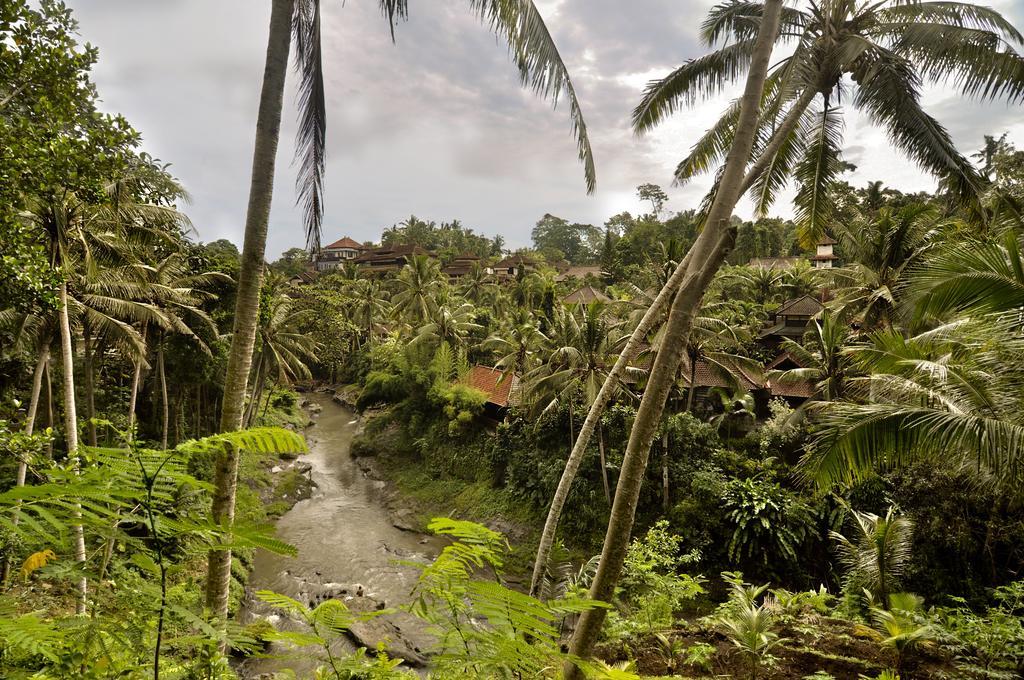 Bali Spirit Hotel & Spa фото и отзывы