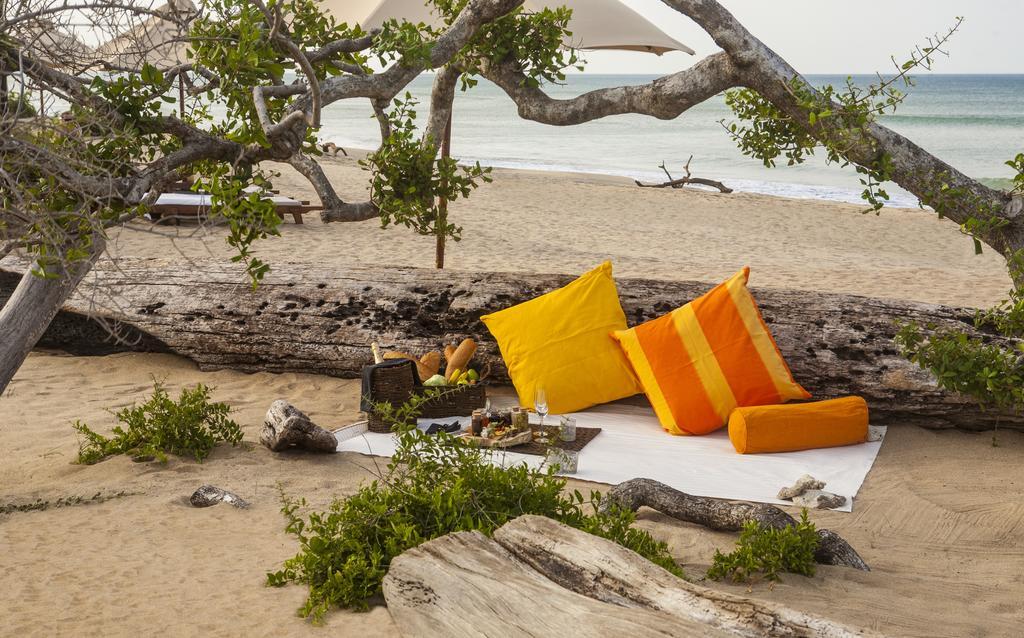 Туры в отель Jungle Beach