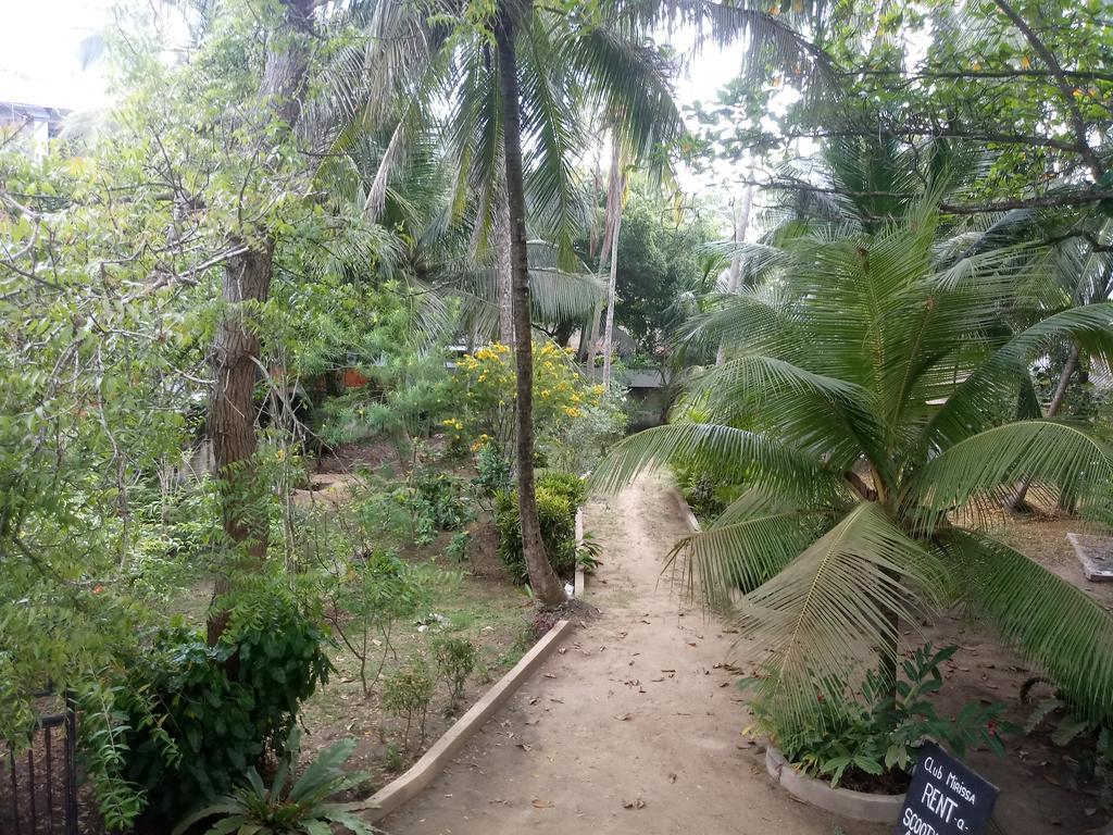 Club Mirissa, Шри-Ланка, Мирисса, туры, фото и отзывы