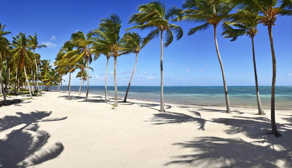 Гарячі тури в готель Catalonia Punta Cana (Catalonia Bavaro Beach Golf & Casino Resort) Пунта-Кана Домініканська республіка