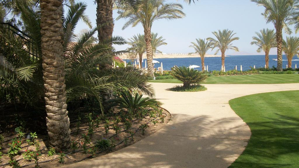 Відпочинок в готелі Stella Di Mare Beach Hotel Шарм-ель-Шейх