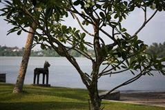 Фото отеля Avani Kalutara Resort