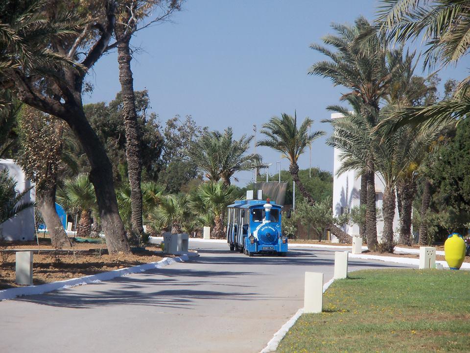 Club Hotel Tropicana Тунис цены