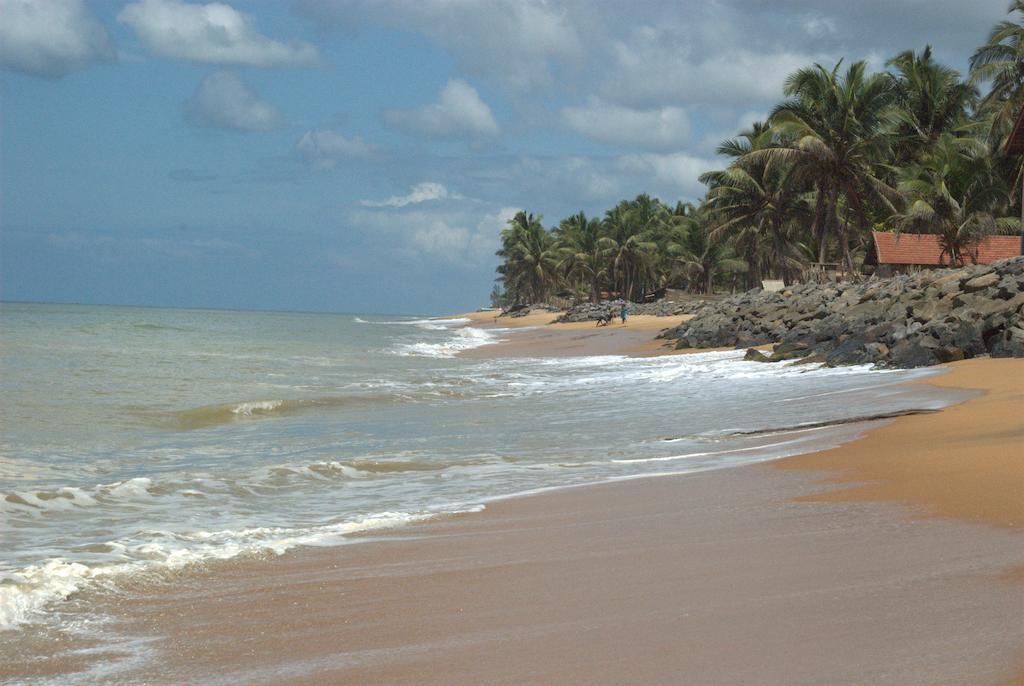 Горящие туры в отель Amagi Beach Маравила Шри-Ланка