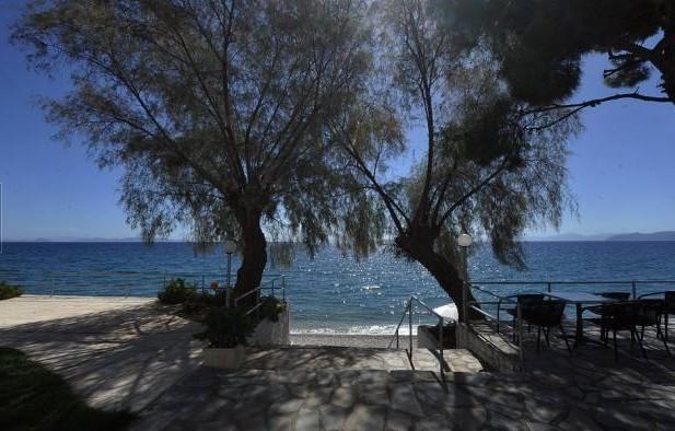 Siagas Beach Hotel, Греция, Аттика, туры, фото и отзывы