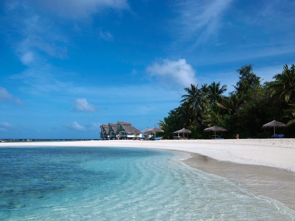 Горящие туры в отель Ellaidhoo Maldives by Cinnamon (ex.Chaaya Reef Ellaidhoo) Ари & Расду Атоллы Мальдивы