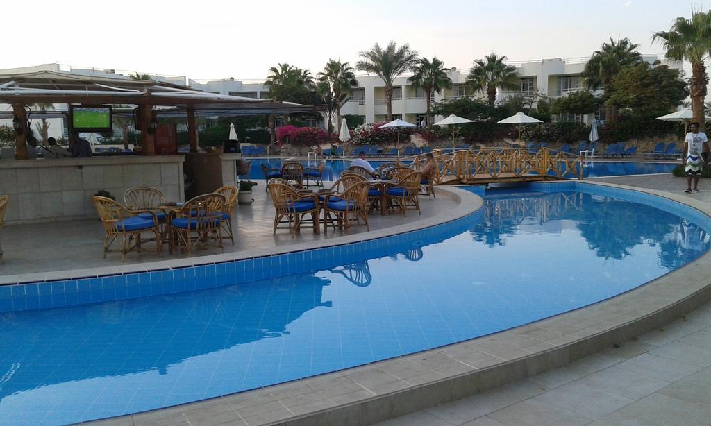 Туры в отель Sharm Reef