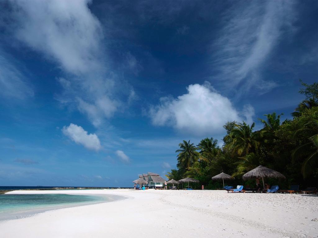 Ellaidhoo Maldives by Cinnamon (ex.Chaaya Reef Ellaidhoo), Ари & Расду Атоллы, фотографии туров