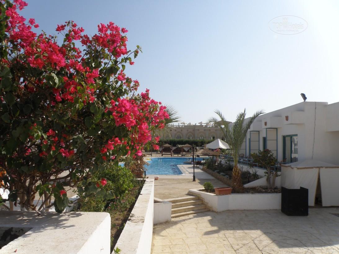 Фото готелю Badawia Resort