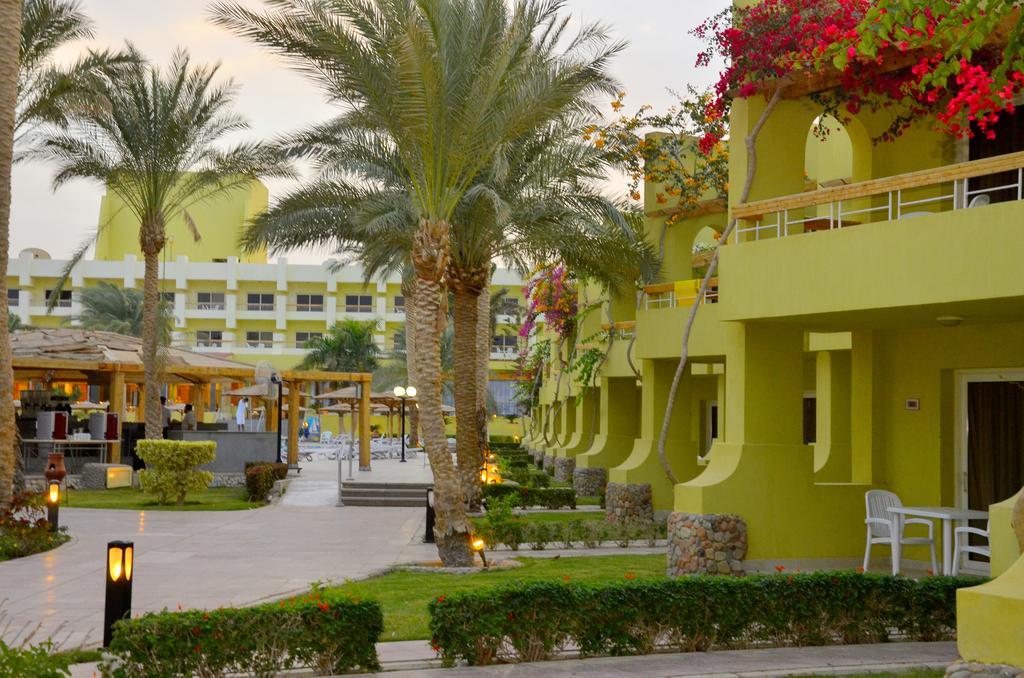 Туры в отель Palm Beach Resort Хургада