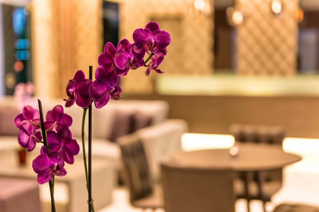 Ariadne Hotel-Apartments, Греция, Ханья, туры, фото и отзывы