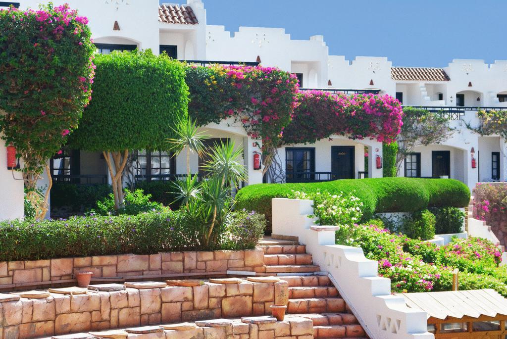 Verginia Sharm Hotel Египет цены