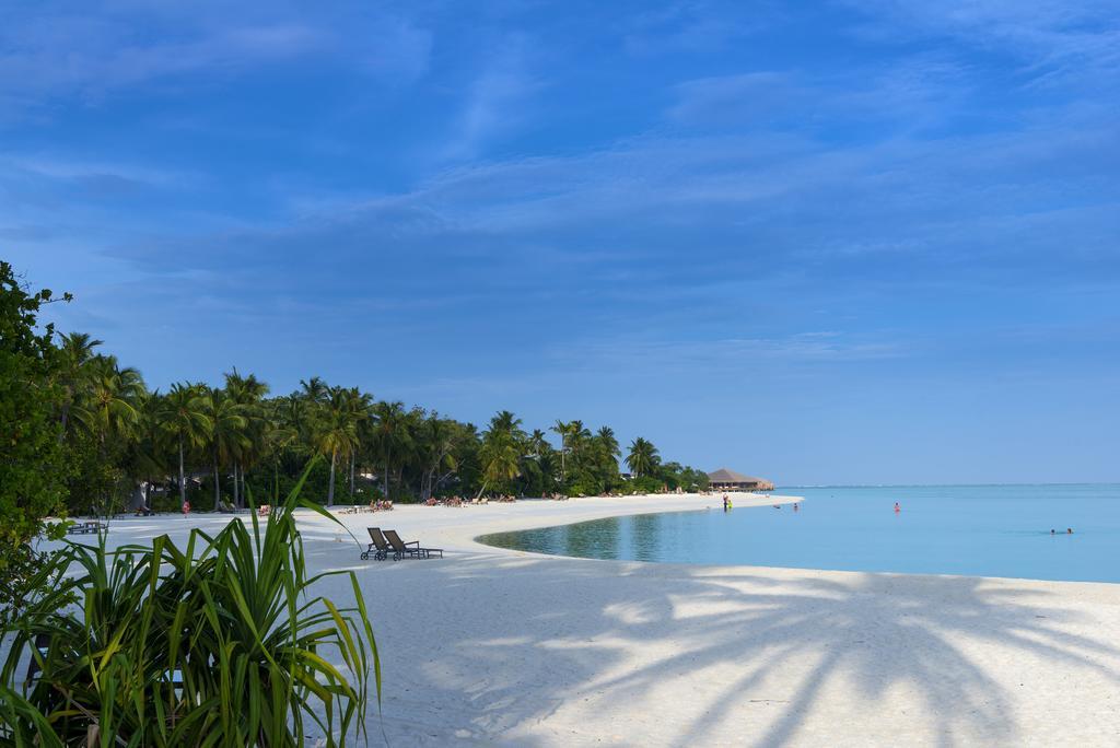 Відпочинок в готелі Cocoon Maldives