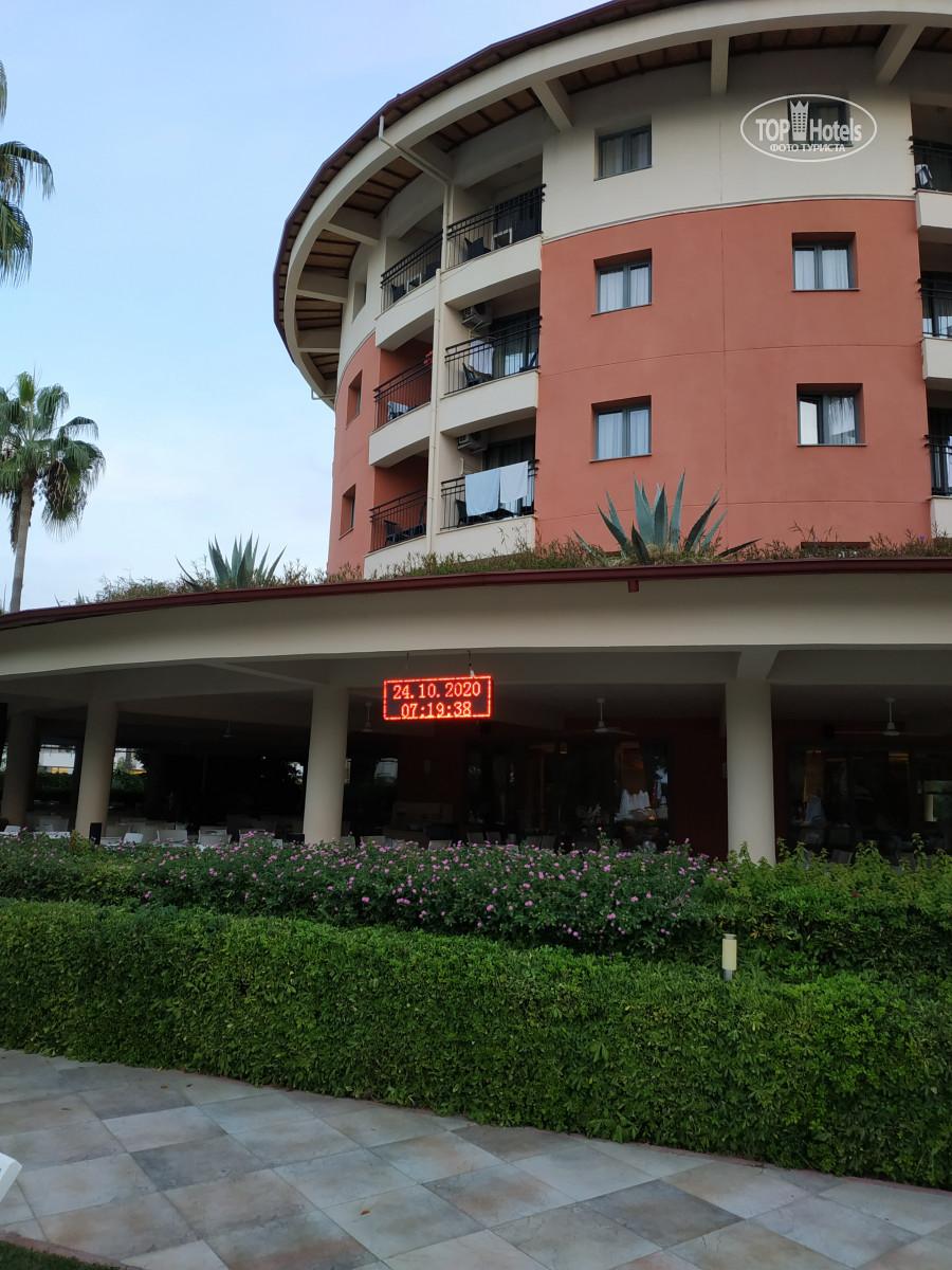 Palmeras Beach Hotel, Аланія, фотографії турів