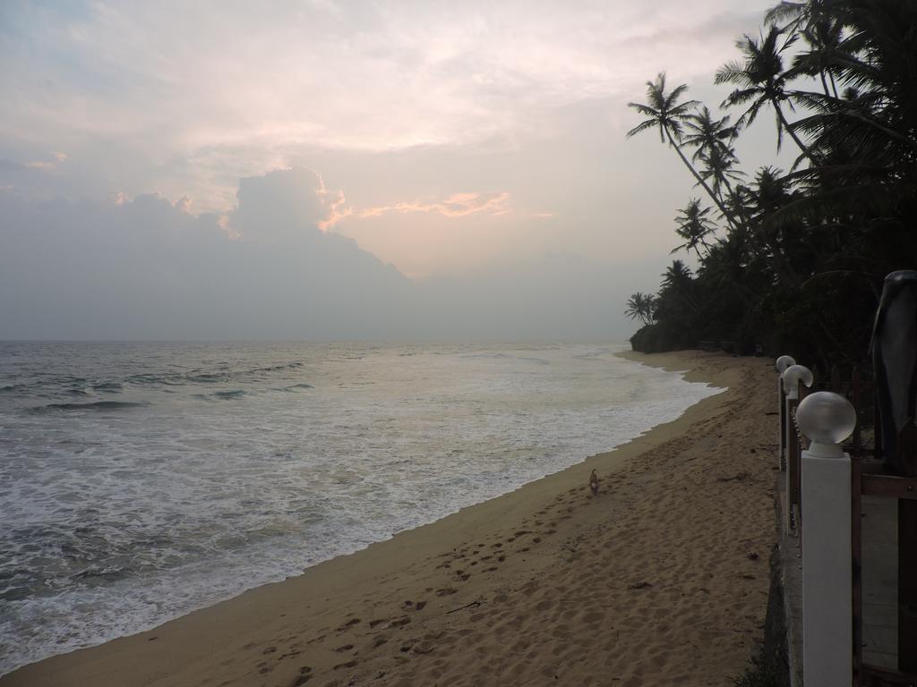 Rock Fort Beach Resort, Шри-Ланка, Унаватуна, туры, фото и отзывы