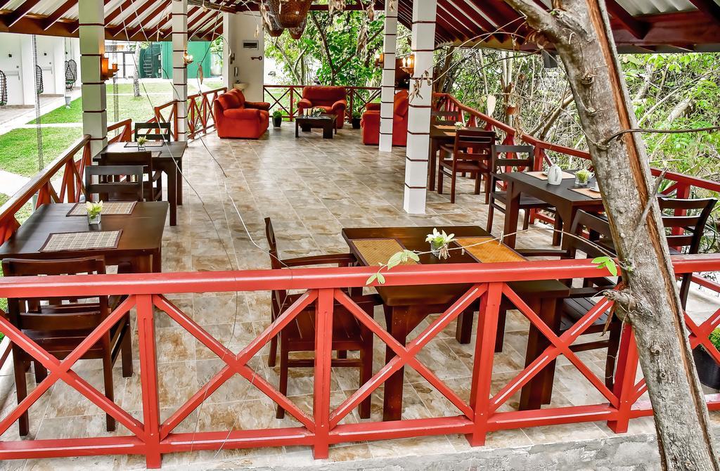 Отель, Шри-Ланка, Амбалангода, Bounty