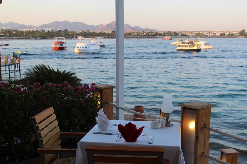 Відгуки туристів Lido Sharm Hotel ( Ex. Iberotel Lido Sharm El Sheikh)