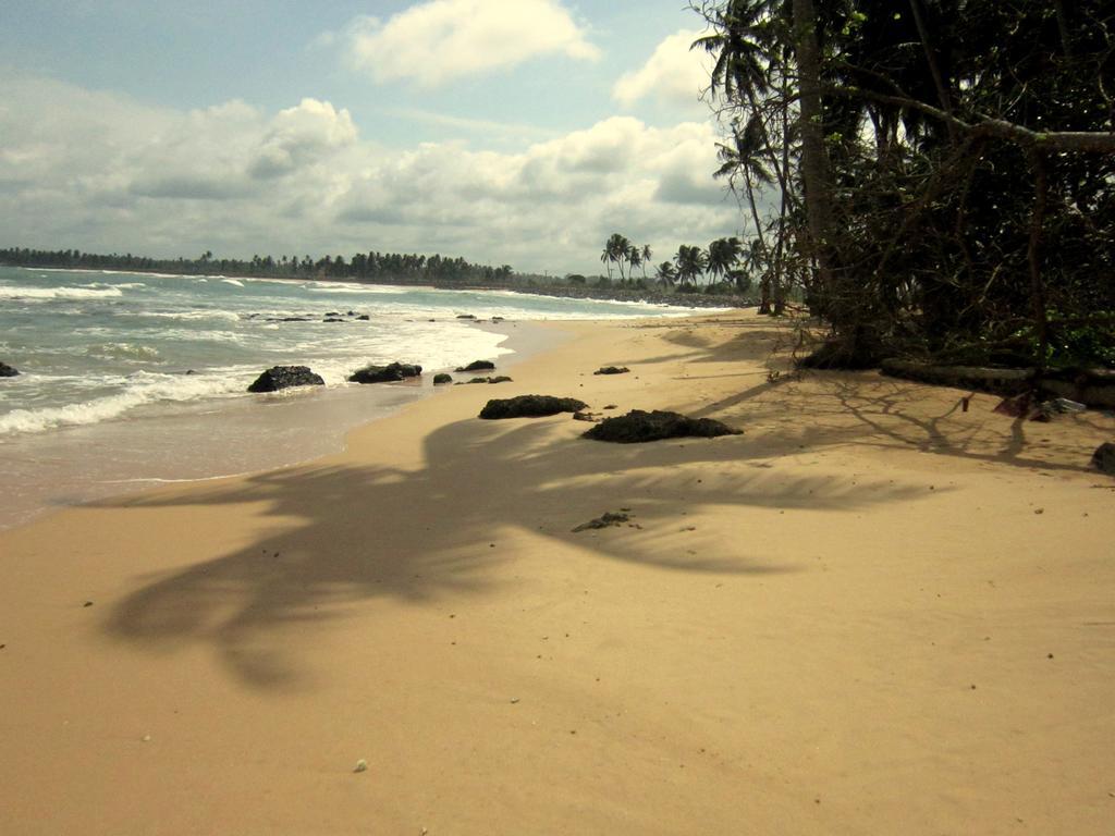 Kalibri Villa (ex.Villa 96 Boutique), Шри-Ланка, Амбалангода, туры, фото и отзывы
