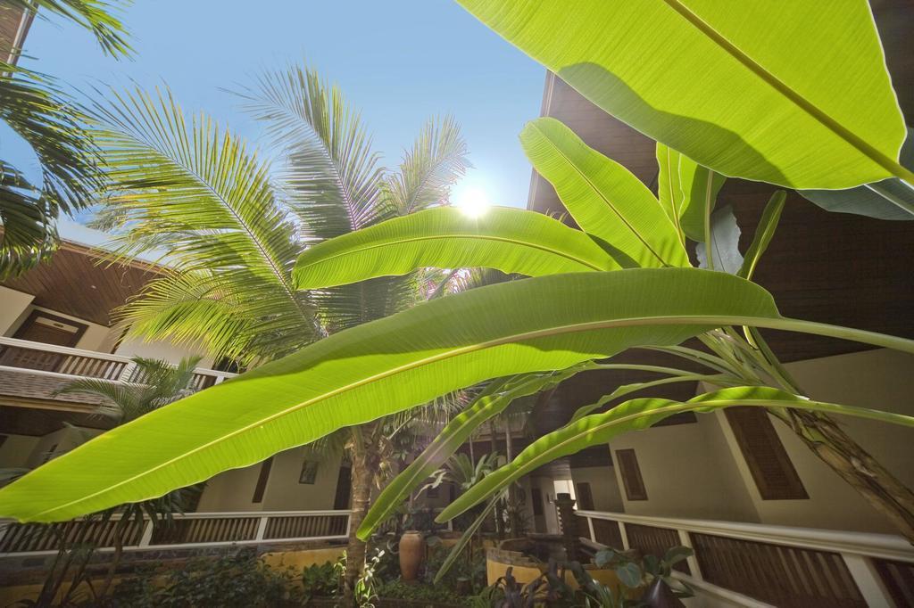 Thai House Beach Resort фото и отзывы