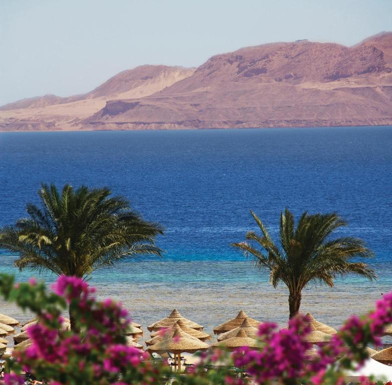 Baron Resort Sharm El Sheikh, фотограції туристів
