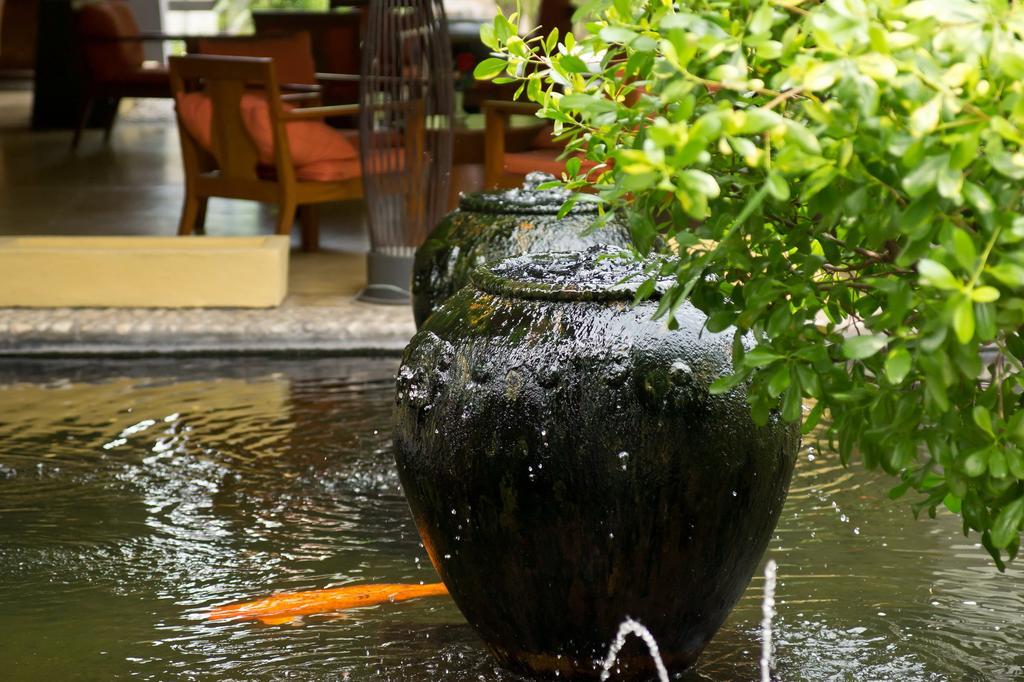 Sunshine Garden Resort, фото отеля 55