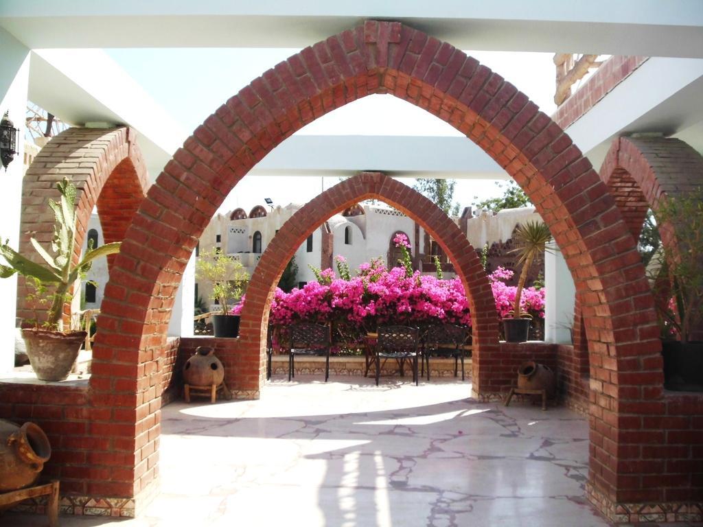 Туры в отель Amar Sina Village Шарм-эль-Шейх Египет