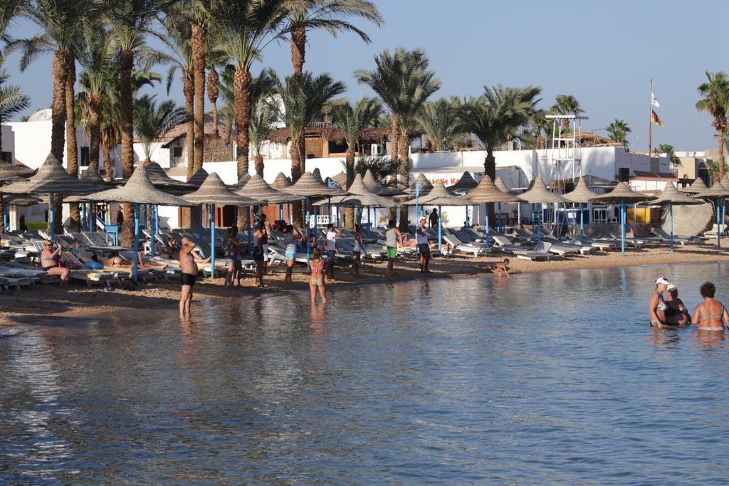 Горящие туры в отель Marlin Inn Resort Хургада Египет