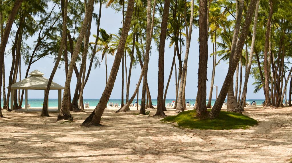 Гарячі тури в готель Vista Sol Punta Cana Beach Resort (ex. Club Carabela Beach)