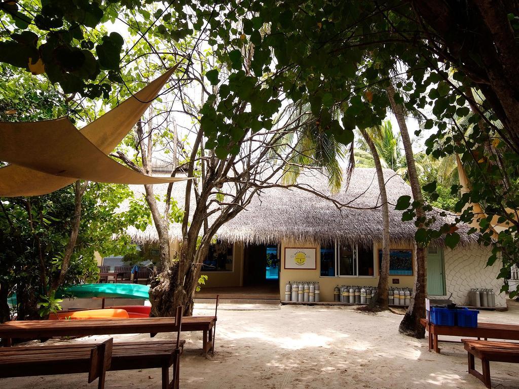 Отзывы гостей отеля Ellaidhoo Maldives by Cinnamon (ex.Chaaya Reef Ellaidhoo)