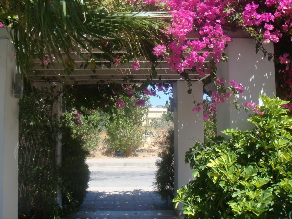 Відпочинок в готелі White Palace Studios Родос (Середземне узбережжя) Греція