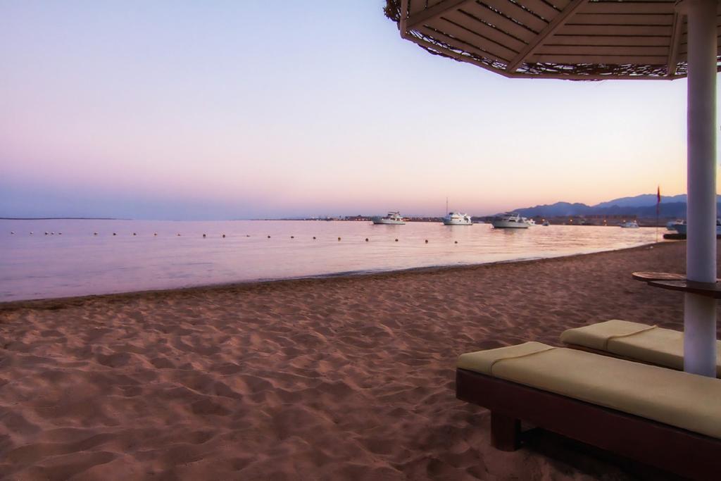 Balina Paradise Abu Soma (ex. Solymar Paradise Abu Soma), Египет, Сафага, туры, фото и отзывы