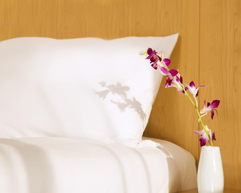 Тури в готель Ibis Hotel Al Barsha Дубай (місто)