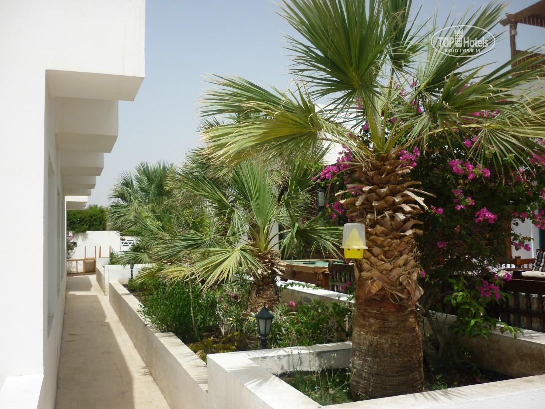 Тури в готель Badawia Resort