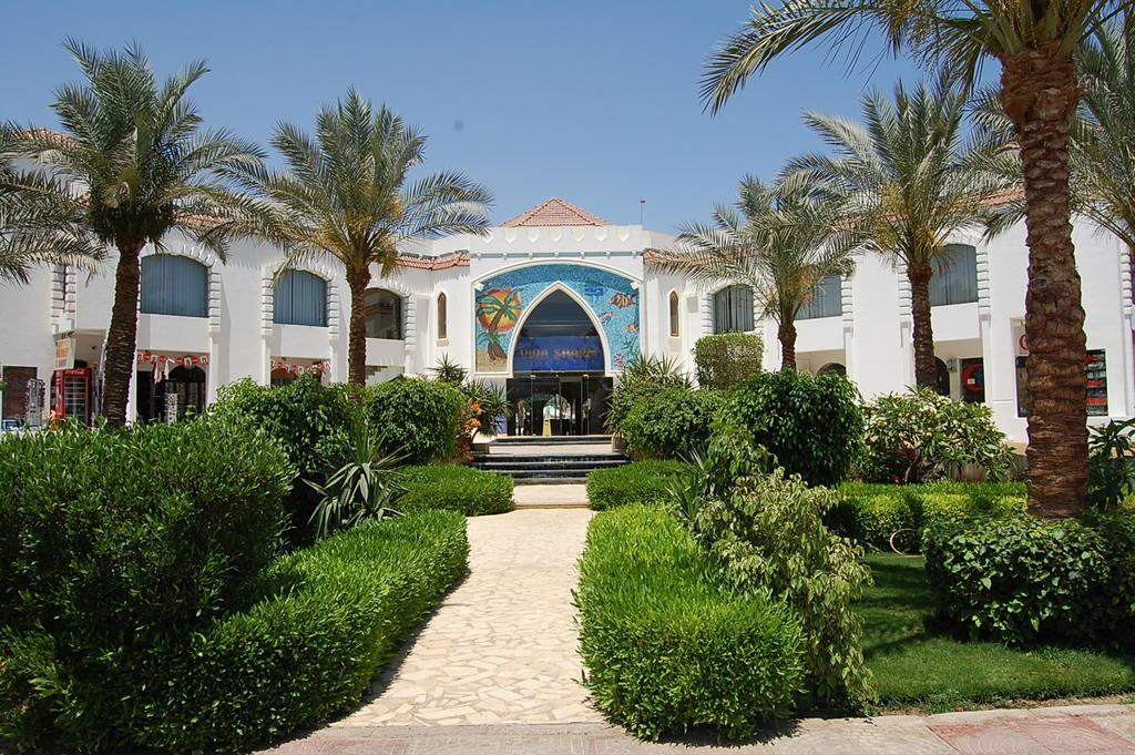 Горящие туры в отель Viva Sharm (ex. Top Choice Viva Sharm)