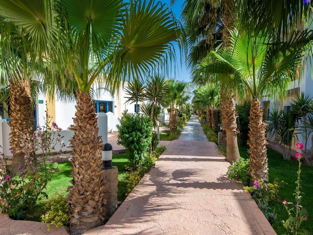 Mirage Bay Resort & Aquapark (ex. Lillyland Aqua Park) Єгипет ціни