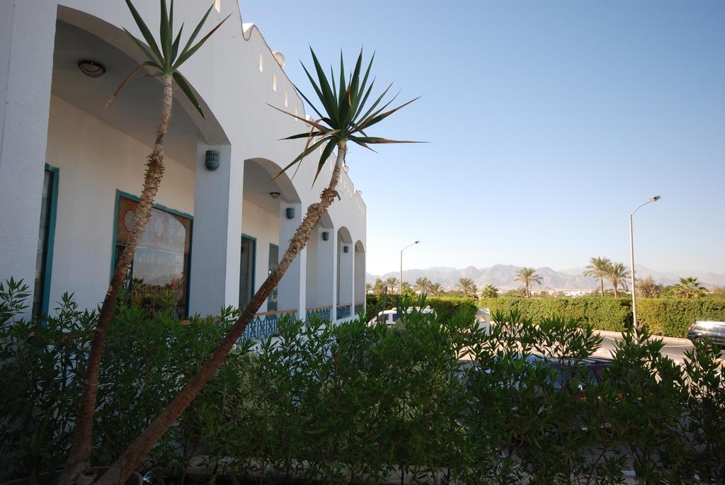 Шарм-эль-Шейх Dive Inn  Resort цены